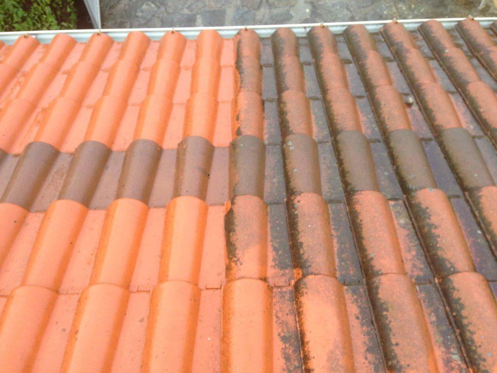 Nettoyage de toiture en tuiles - Dominique Rénovation