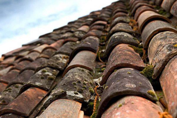 Nettoyage de toiture par Dominique Rénovation à Pessac